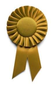 Publishing Solo Website Wins Award